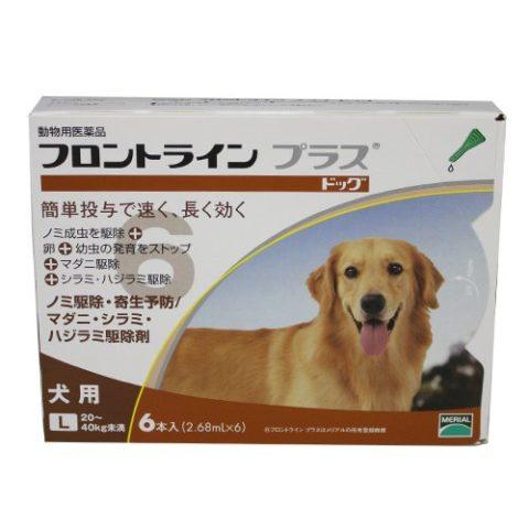 犬のマダニの駆除と予防にフロントラインプラス